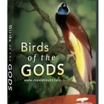 PBS-Nature Birds of the Gods